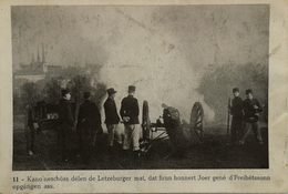 Luxembourg - Sammler Karte Format AK // NO. 11 // Kanoneschoss Delen De Letzeburger Mat.. (ris U Ter) 19?? - Cartes Postales