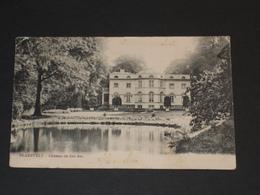BLAESVELT BLAASVELD - Chateau Kasteel - Willebroek