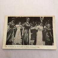 Luxembourg - Sammler Karte Format AK // NO. 53 // D'Sche Nhet An...... . 19?? - Cartes Postales
