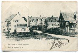 CPA - Carte Postale - Belgique - La Panne - Avenue Des Dunes - 1905  ( SVM11901 ) - De Panne