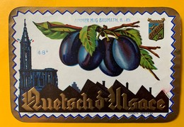 12584 -   Quetsch D'Alsace Zimmer Brumath - Etiketten