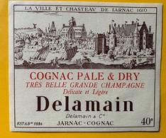 12609 -  Cognac Pale & Dry Très Belle Grande Chamampagne Delamain Jarnac - Otros