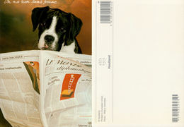 """Boxer Lisant Le Journal """"le Monde"""" - Houtland 9790322401 - Chiens"""