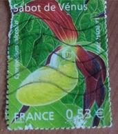 Sabot De Vénus (Fleur) - France - 2005 - Frankreich