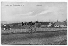 Goldenstedt I . O . Gruss Aus - Totalansicht - Vechta