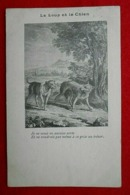 CPA Fantaisie Le Loup Et Le Chien - Contes, Fables & Légendes
