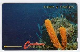TURKS & CAICOS TELECARTE REF MVCARDS T&C-1B CABLE & WIRELESS 1991 5$ 1CTCB CORAIL - Turks & Caicos (Islands)