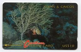TURKS & CAICOS TELECARTE REF MVCARDS T&C-1C CABLE & WIRELESS 1991 10$ 1CTCC CORAIL - Turks & Caicos (Islands)