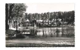 Vélizy-Chaville - Etang Colin Porcher ( Dit étang D'Ursine ) - 368 - Velizy