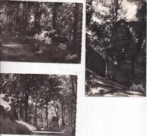 """77 CHAILLY-EN-BIÈRE - Lot De 3 Cartes """"Les Roches"""" - CCE-SNECMA, Le Parc - Photo MIGNON - 2 Scans - Altri Comuni"""