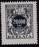 POLAND 1924 Postage Due Fi D55 Mint Hinged - Impuestos