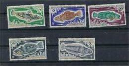 T A A F   1971   Cat Yt   N° 34  à  38    N**  MNH - Terres Australes Et Antarctiques Françaises (TAAF)