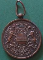 Medaille Dendermonde Bestendig Festival 1931  Brons 29,65gr. Diam. 42mm - Other