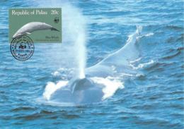 1983 - PALAU (Belau Ou Pelew) -  Blue Whale - Baleine Bleue WWF - Palau