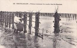17-034......CHATELAILLON ...PECHEUR RAMASSANT LES MOULES - France