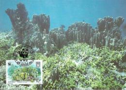 1992 - TUVALU - Blue Coral - Corail Bleu WWF - Tuvalu