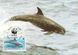 1993 - NIUE Alofi - Risso's Dolphin - Dauphin De Risso WWF - Cartes Postales