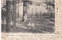 BEVERLOO / KAMP / KAMP  / LE PARC  1903 - Leopoldsburg (Beverloo Camp)