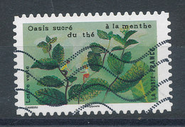 1465 (o) Oasis Sucré Du Thé à La Menthe - France