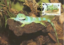1990 - TONGA - Nuku'Alofa - Banded Iguana - Brachylophus Fasciatus Ou Iguane Des Fidji  WWF - Tonga