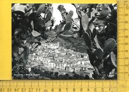 CPM  ITALIE, CALABRIA, LAMEZIA : Nicastro, Rione S. Teodoro - Lamezia Terme
