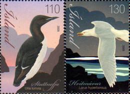 Ref. 240322 * NEW *  - ICELAND . 2009. BIRDS. AVES - Nuevos