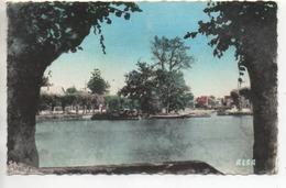 CP ( Vigneux - Le Lac ) - Vigneux Sur Seine
