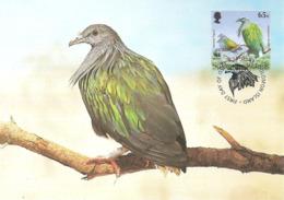 1993 - SOLOMON ISLANDS - Nicobar Pigeon  Iles Salomon WWF - Salomon