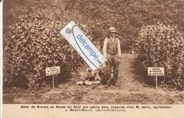 MESNIL-RAOULT : Essai De Nitrate Du Chili Chez M Jarry Agriculteur. - Non Classés