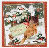 DOUBLE POSTCARD - MARJOLEIN BASTIN - BIRD / ROBIN - USED - CHRISTMAS - LARGE FORMAT - GLITTER - Altri