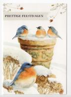 DOUBLE POSTCARD - MARJOLEIN BASTIN - BIRDS - USED - CHRISTMAS - HALLMARK - GLITTER - Altri