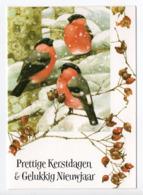 DOUBLE POSTCARD - MARJOLEIN BASTIN - BIRDS / BULLFINCHES - USED - CHRISTMAS - HALLMARK - GLITTER - Altri