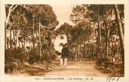 Dép 06 - Antibes - Juan Les Pins - La Pinède - état - Antibes