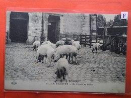 CPA (78) La Villette. Maison Fouquet. De L'écurie Au Brûloir. Cochons. (N.2036) - Andere Gemeenten