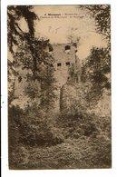 CPA-Carte Postale-Belgique-Moresnet- Ruines Du Château De Schymper : De Sauvage  -VMO14464 - Plombières