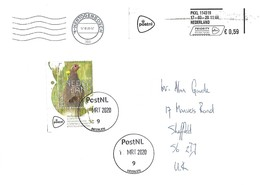 Netherlands 2020 Heerlen Grey Partridge Perdix Perdix Returned (retour) Cover. Corona Visus? - Grey Partridge