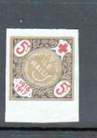 Erinophilie, Vignette Pour Les Hopitaux De La Croix Rouge Francaise, Ile Wallis - Commemorative Labels