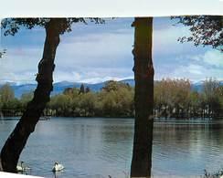 CPSM PUIGCERDA - El Lago - Le Lac   L2985 - Espagne