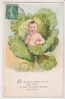 27429 Cpa En Relief  Choux  : Bebe Enfant Garçon Naissance Legume -ed ? Série 604 1909? - Sammlungen, Lose & Serien