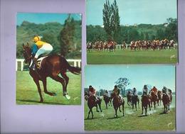 5 Cartes Modernes -  Sur Les Champs De Courses (  Hippisme , Courses De Chevaux ) - Hípica