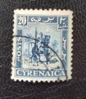 Cyrénaïque - Administration Britannique 1950 CY OB 9 Senussi Warrior Chevaux - Otros