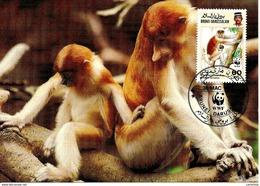 1991 - BRUNEI DARUSSALAM - Proboscis Monkey Singe  WWF - Brunei