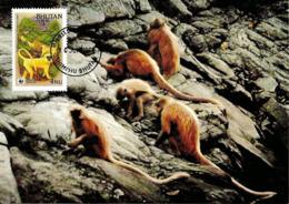 1984 - BHUTAN - Bhoutan - Golden Langur Monkey - Singe Langur Doré  WWF - Bhoutan