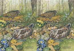 953  Bécasse Des Bois (Scolopax Rusticola): 2 Cpa D'Allemagne - Eurasian Woodcock: 2 Postcards From Germany - Oiseaux