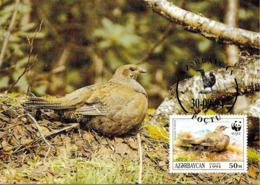 1994 - Azerbaïjan Azərbaycan - Caucasian Black Grouse - Tertras Du Caucase  WWF - Azerbaïjan