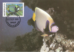1986 - MALDIVES - Male - Emperor Angelfish - Ange De Mer Impérial  WWF - Maldives