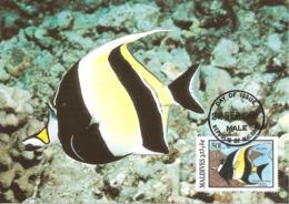 1986 - MALDIVES - Male - Moorish Idol Fish - Zancle Cornu WWF - Maldives
