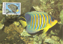 1986 - MALDIVES - Male - Regal Angelfish - Poisson-ange Duc  WWF - Maldives
