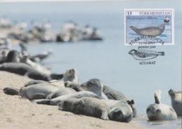 1993 - TURKMENISTAN Туркмениста́н - Caspian Seal - Phoque De La Mer Caspienne WWF - Turkménistan
