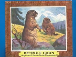 BUVARD - BEAUTÉ - SANTÉ - PÉTROLE HAHN -  LES MARMOTTES - ILLUSTRATEUR - Animales